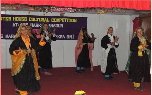 Inter House Cultural Competition